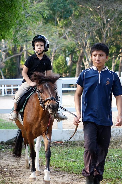 Wisata-Edukatif-Berkuda-Untuk-Anak-di-Jogja