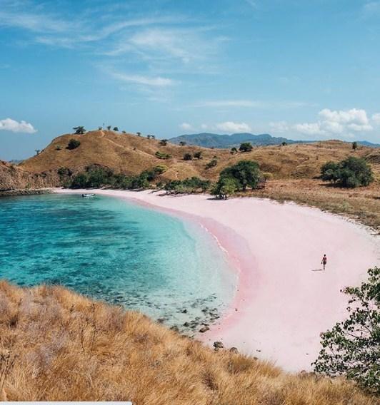 pantai pink di luar negri